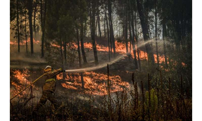 Often a fire is controlled at night and then it rekindles in the morning,' one expert said