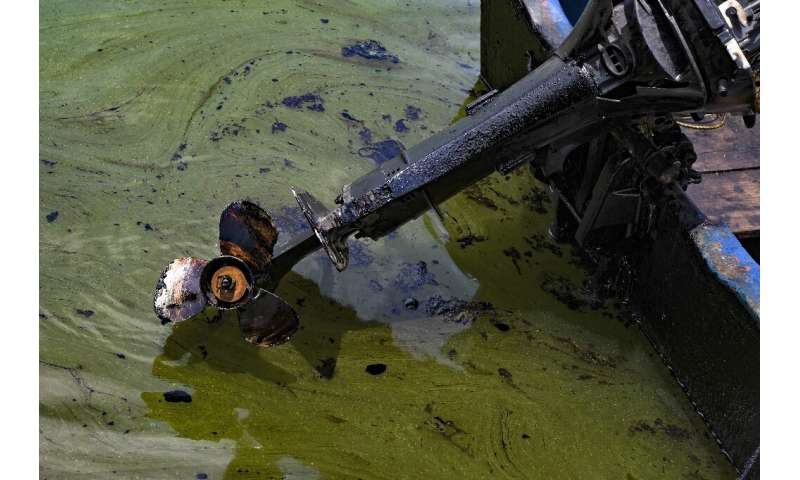 Oil pollution in the lake has left water poisoned
