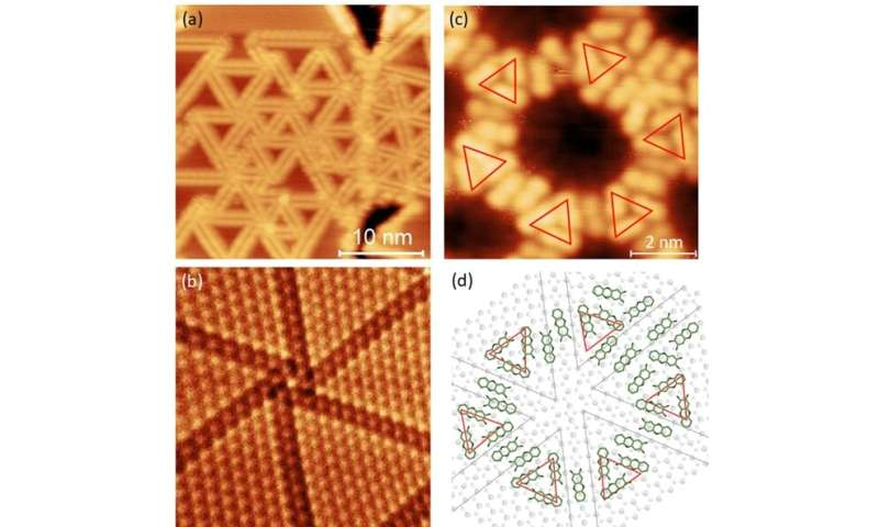 Organic porous structures on 2-D defect networks