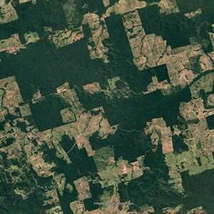 OU-led study shows improved estimates of Brazilian Amazon gains and losses