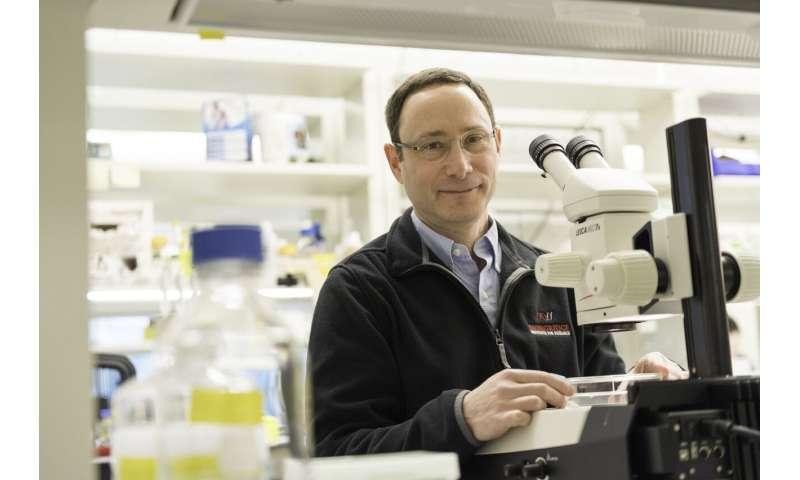 Parasite paralysis: A new way to fight schistosomiasis?