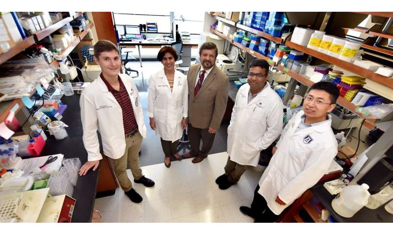 Pathway found for treatment-resistant lung cancer