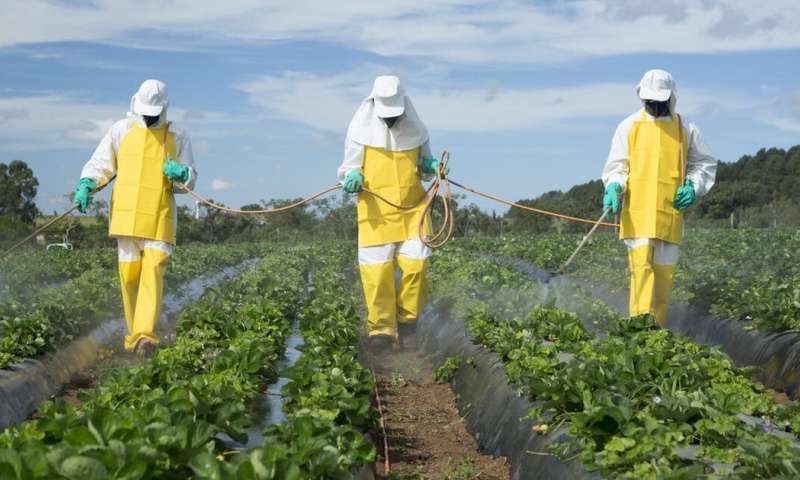 Image result for pesticides