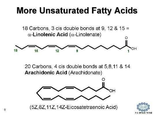 Phat on potential, lipidomics is gaining weight