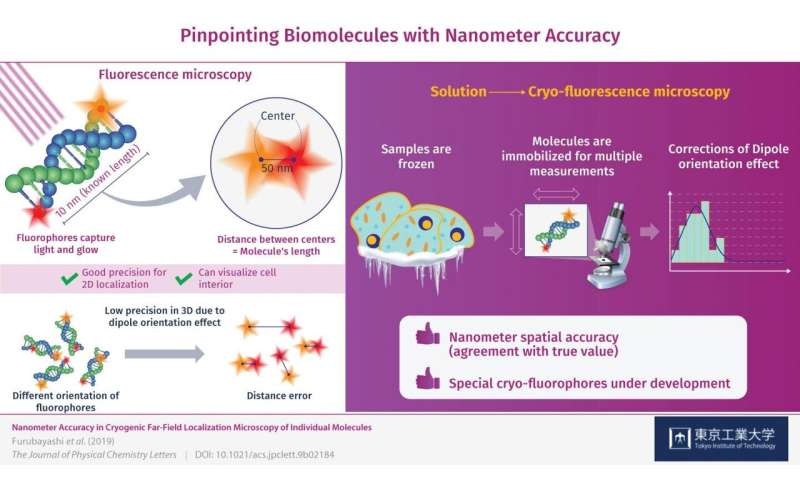 Pinpointing biomolecules with nanometer accuracy