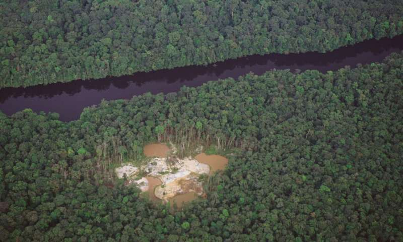 Promoting smarter ways to mine within fragile forests
