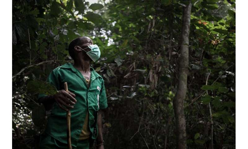 Protector: A ranger dons a facemask to help him follow the tracks of a gorilla, a famously elusive species