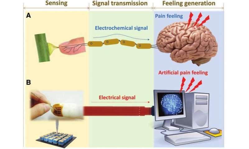 Psychosensory electronic skin technology for future AI and humanoid development