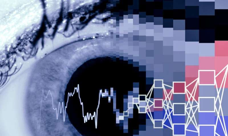 Pupil dilation and heart rate, analyzed by AI, may help spot autism early
