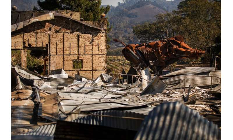 """Lord Snort,"" a steel sculpture of a boar, is seen amid the rubble after the Soda Rock Winery was lost in the Kincade"