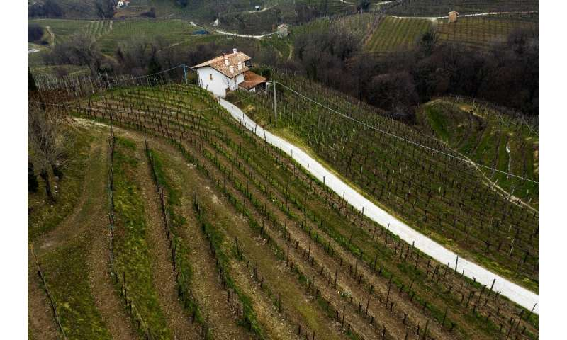 """""""The landscape is characterised by 'hogback' hills (or) ciglioni,"""" UNESCO said.""""For centuries, this rugged terrai"""