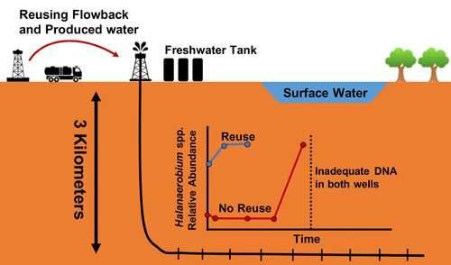 Recycling salty water could help control detrimental microbes in Alberta drill sites