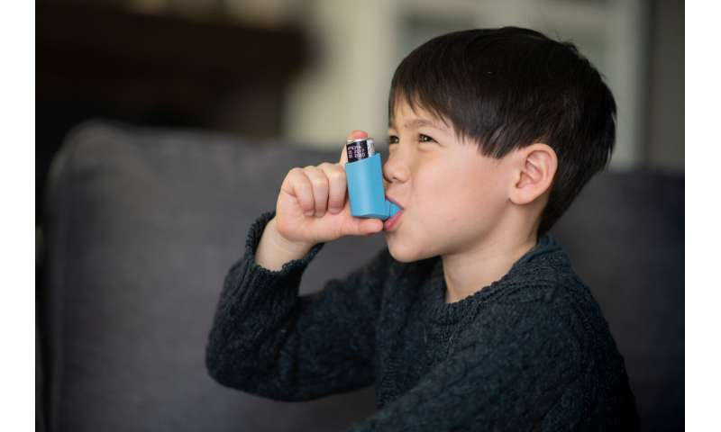 Reducing mouse allergens may improve lung growth in asthmatic children