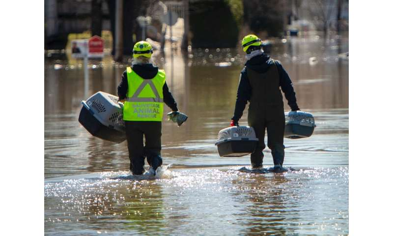 Rescuers hold pet carriers as they search for animals abandoned by their owners who fled the heavy flooding in the Canadian town