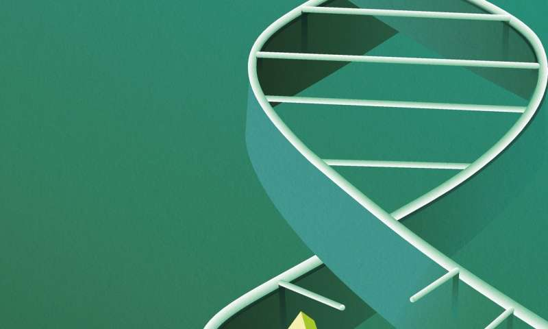 Researchers uncover new mechanism of gene regulation involved in tumor progression