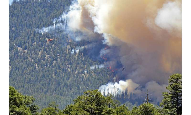 Restoring forests means less fuel for wildfire and more storage for carbon