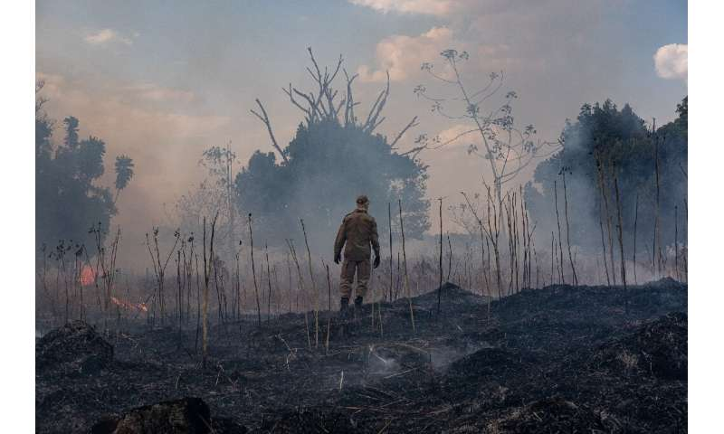 Satellite data showed 3,859 new outbreaks of fire, of which some 2,000 were concentrated in the Amazon region