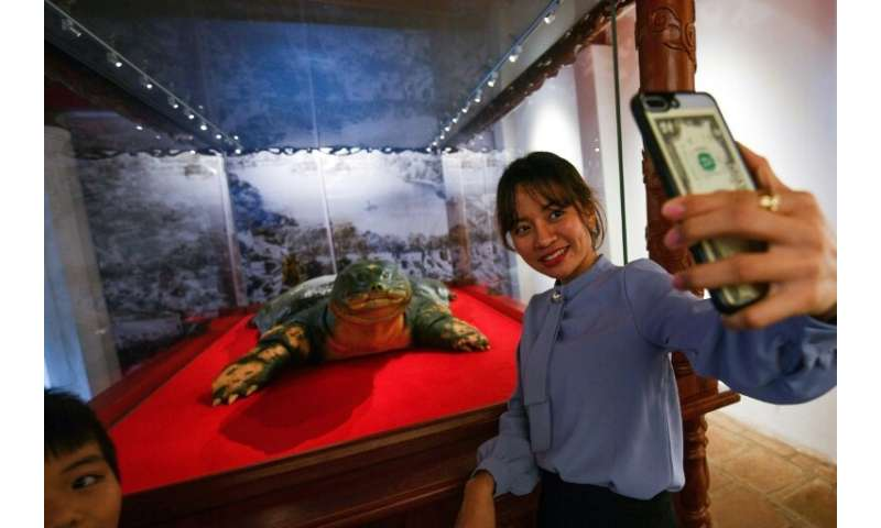 Say cheese: A woman takes selfie with a sacred giant turtle embalmed in Hanoi after its 2016 death