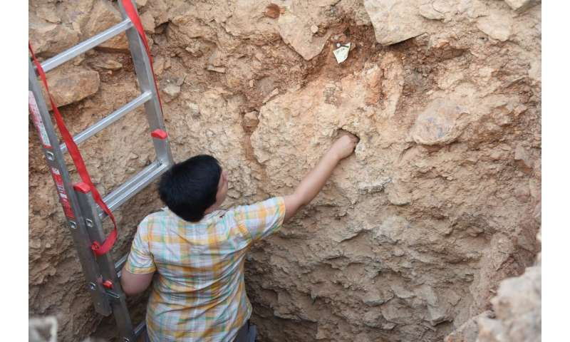 Scientists find early humans moved through Mediterranean earlier than believed