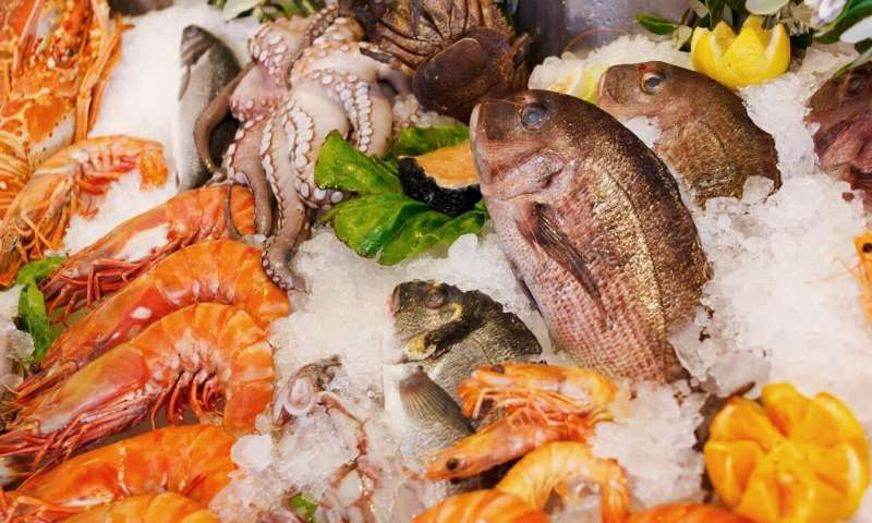 seafood consumption during pregnancy may improve attention