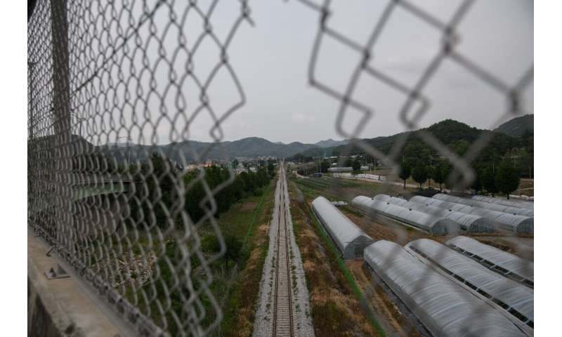 Seoul is worried a swine flu outbreak in North Korea could cross the heavily militarized border and devastate the South's US$5.9