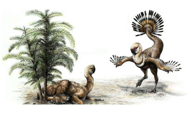 Sex appeal helped dinosaurs take flight