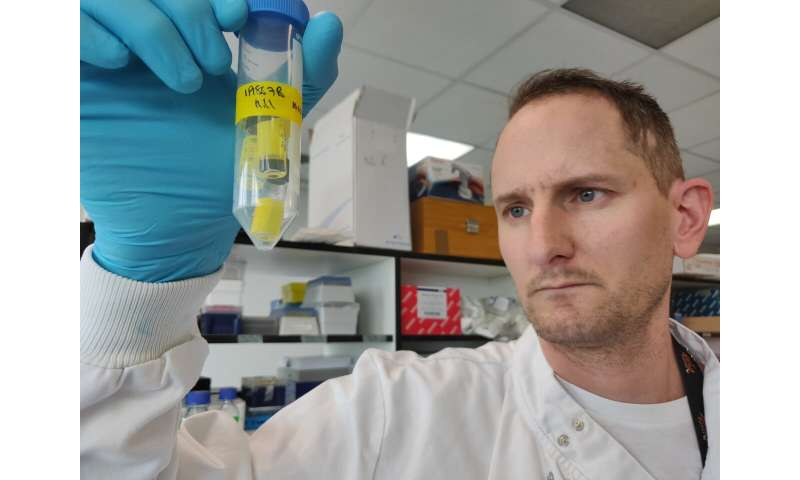 Shrinking brain tumours and opening the door for targeted cancer therapies