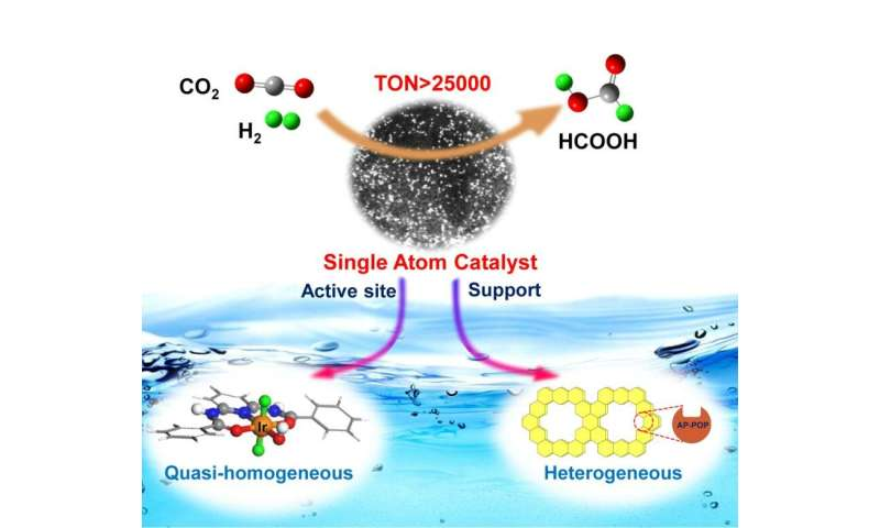 Single-atom catalyst based on homogeneous catalysis prototype for CO2 transformation developed