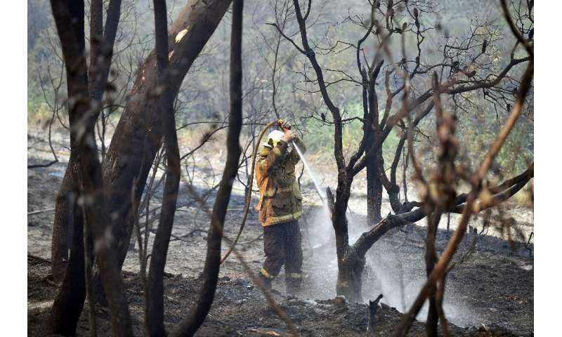 Six people have died and 700 homes destroyed in Australia's bushfires