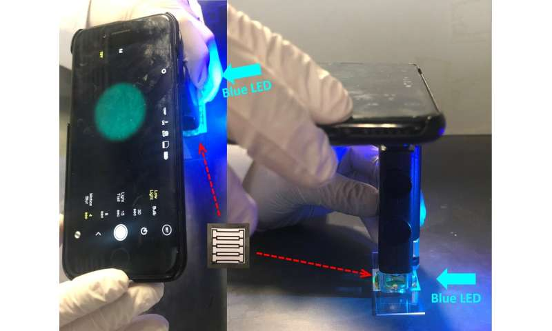 Smartphone-based device for detecting norovirus, the 'cruise ship' microbe
