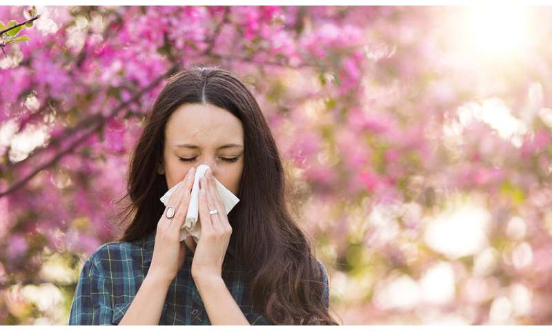 Sniffles and sneezes: A Q&A about allergies with Dr. Ryan Steele