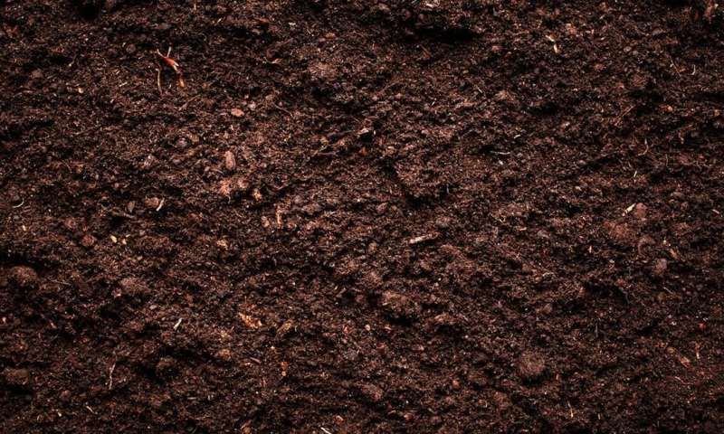 Soil is the key to Earth's history (and future)