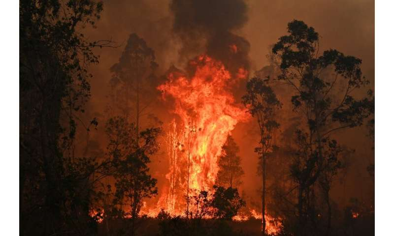 Some fires have burned as high as 20 foot (six metres)