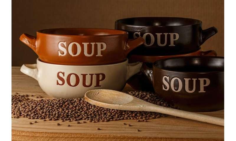bouillons de soupe  Des tests de laboratoire montrent que certains bouillons de soupe traditionnels ont des propriétés antipaludiques soupbroths