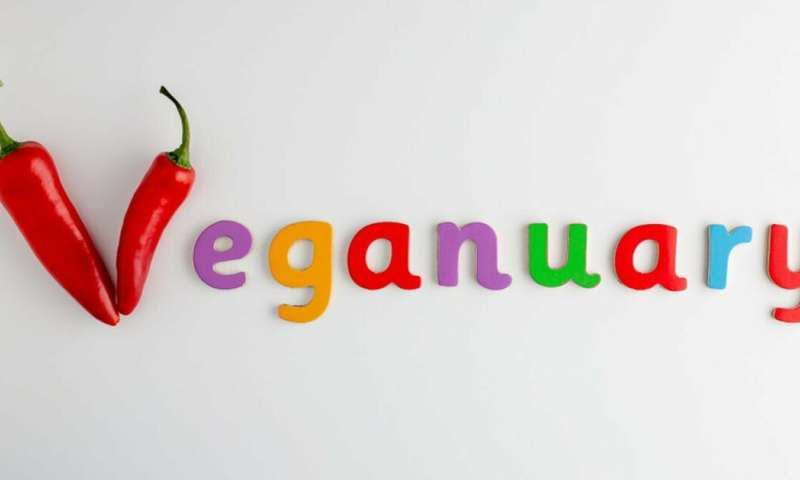 So you went vegan in January – now what?
