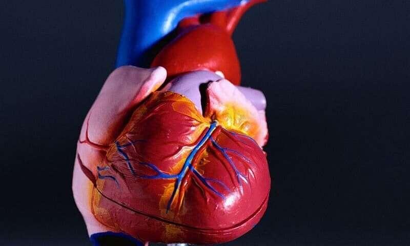 Spironolactone noninferior in duchenne muscular dystrophy