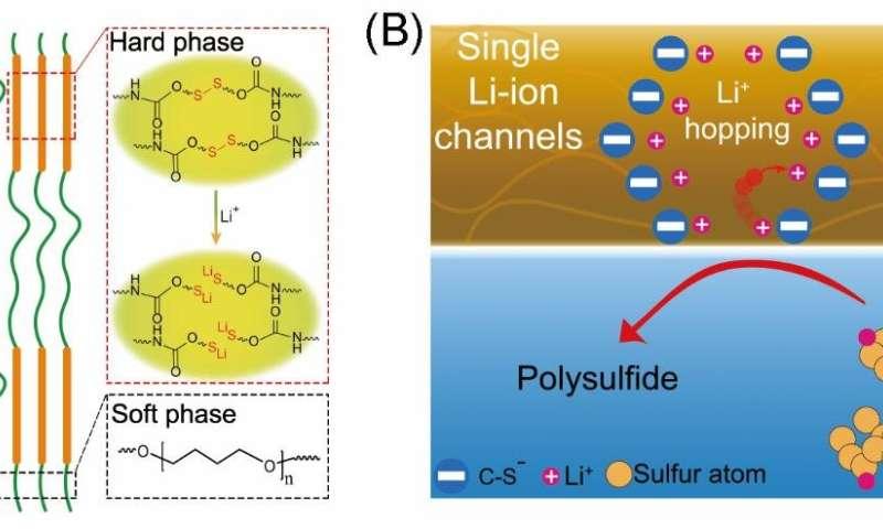 Stabilizing sulfur cathode by single Li-ion channel polymer binder