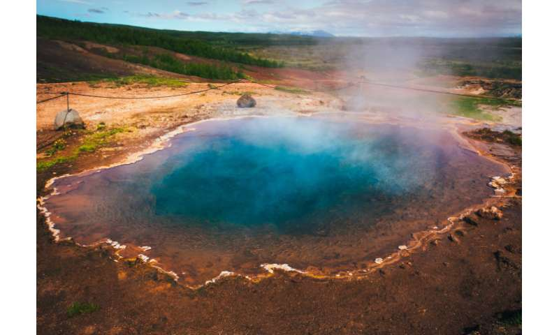 Strange bacteria hint at ancient origin of photosynthesis