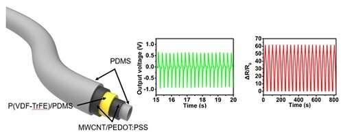 Stretchable multi-functional fiber for energy harvesting and strain sensing