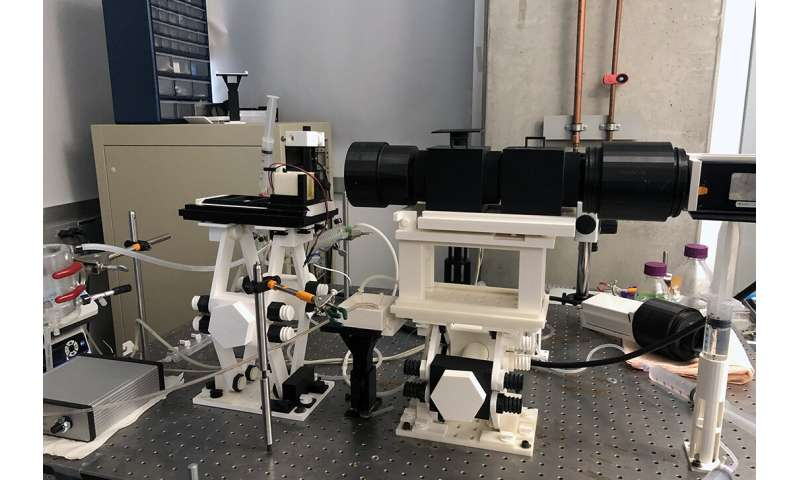 Students design 3-D-printed optical mapping system