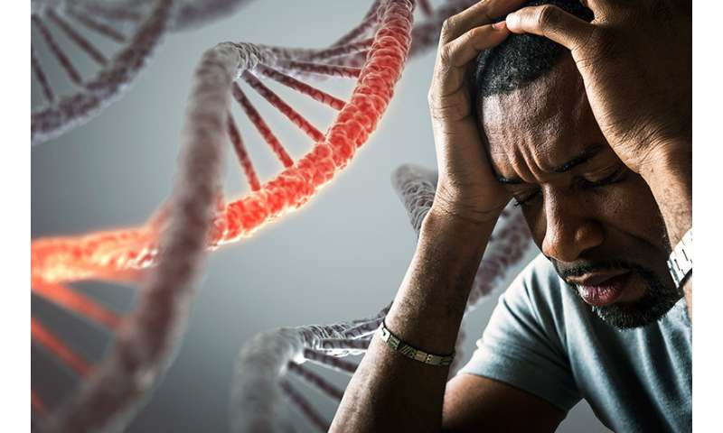 Study links racism to chronic inflammation and disease risk among African Americans