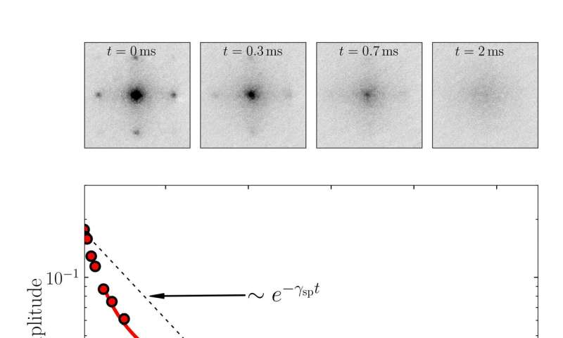 Study observes anomalous decay of coherence in a dissipative many-body system