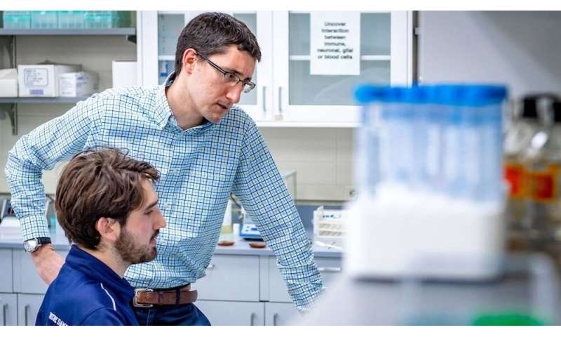 Study of the nervous system could have implications for regenerative medicine and cancer