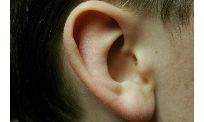 Study shows stimulation of the ear can help manage Parkinson's symptoms