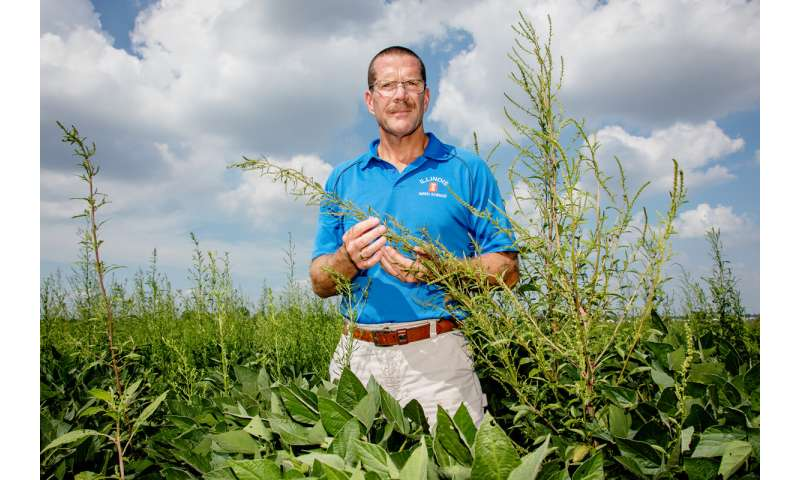 Superweed resists another class of herbicides, study finds