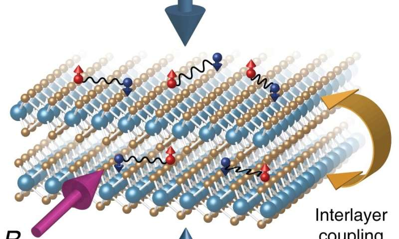 Suspended layers make a special superconductor