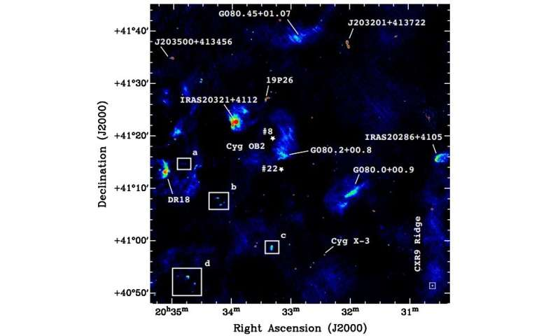 Swan EGGs in the sky: Astronomers conduct radio observations of free-floating evaporating gas globules in Cygnus OB2