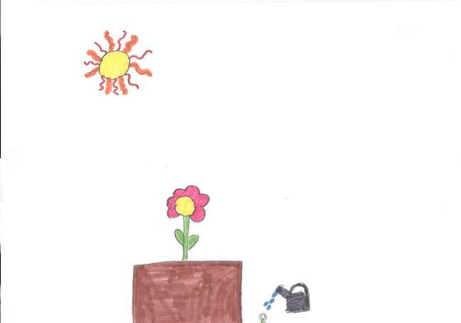 Symmetry, a resource that children spontaneously use to draw the plant world
