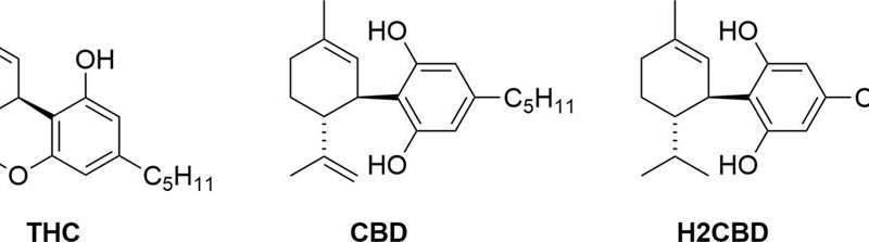 Synthetic version of CBD treats seizures in rats