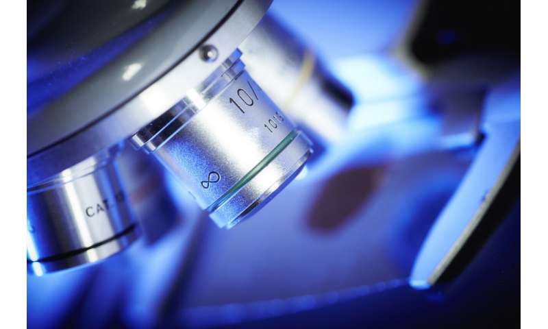 Targeted cancer treatment: innovative approach could prevent serious side effects